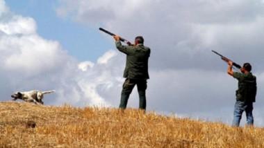 """Bertola (M5S): """"Mentre i contagi avanzano e le aziende rischiano di chiudere, la Lega vuole parlare della caccia al merlo"""""""