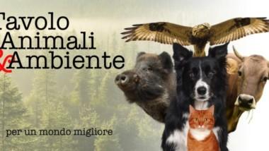"""BERTOLA – FREDIANI (M5S): """"MOVIMENTO 5 STELLE UNICA FORZA POLITICA A SOTTOSCRIVERE IL DOCUMENTO DEL TAVOLO ANIMALI E AMBIENTE. UN IMPEGNO IN CONTINUITA' CON LAVORO PORTATO AVANTI IN QUESTI ANNI"""""""
