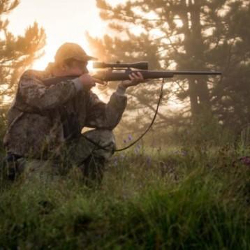"""M5S: """"In piena emergenza virus la giunta di destra tira dritto e punta a peggiorare la legge sulla caccia. Ci opporemo in ogni sede"""""""
